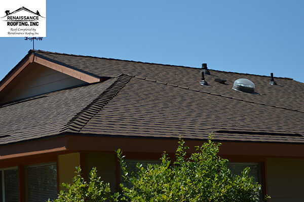 House Roof Shingles